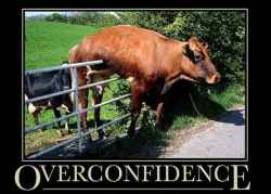 https://www.equities.com/news/how-overconfidence-bias-can-affect-your-trading